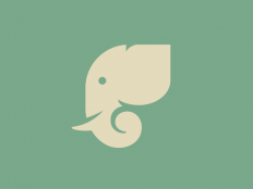 Elephant Icon by Anna Rising on Inspirationde