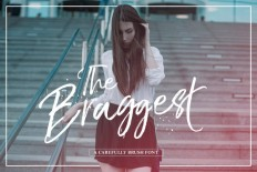 The Braggest by Lostvoltype on Inspirationde