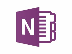 OneNote Vector Icon - ICON - Software : LogoWik.com