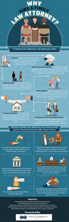 Infographic : Reasons to Hire a Family Law Attorney-FELDMAN & SCHNEIDERMAN P.L.