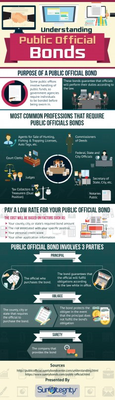 Infographic :Significance of Public Official Bonds - Suretegrity