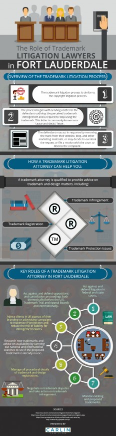 Infographic: Things You Must Know About the Trademark Litigation Process | Carlin Law Firm
