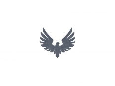 Eagle by Andreas Storm on Inspirationde