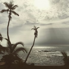 """seguner on Instagram: """"#ghana #gana #africa #afrika #axim"""" • Instagram"""