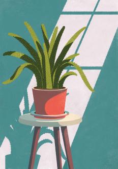 pavillon-gazon-illustrations-on-behance-1498753599n48gk.png (756×1080)