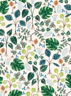 flora_1718359_house_plants_repeat-650x886.jpg (650×886)