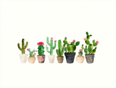 """Cactus"" Art Prints by BekkaCampbell 