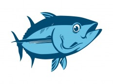 Tuna Fish Vector File - Logowik.com