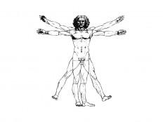 Vitruvian Man Vector File - Logowik.com