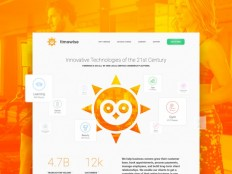 TimeWise Company Overview Page by IV?N CUCER on Inspirationde