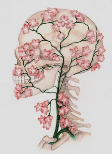 drawn-ssckull-flower-3.jpg (700×958)
