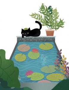 black cats on