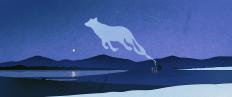 STRAUTNIEKAS illustration portfolio