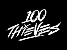 100 Thieves branding by Jared Mirabile on Inspirationde
