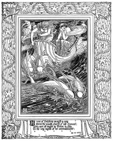 teme-dolphins-1600.jpg (1279×1600)