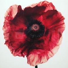 Contemporary Art Blog | sometimes-now: Irving Penn