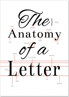 The Anatomy of a Letter (Printable) on Inspirationde