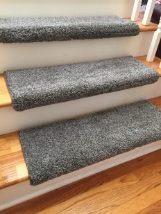 Dazzling Magma Plush Shag True Bullnose™ Carpet Stair Tread – For Safety Comfort Dog Cat Pet (Sold Each)   Chaps Treads - Home of the TRUE Bullnose™ Tread