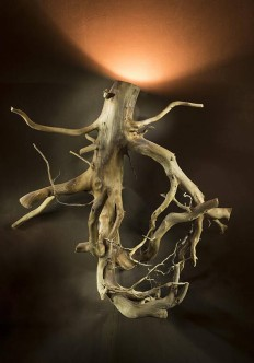 Woodstock Root Sconce 25 tall
