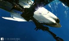 concept ships: 2014