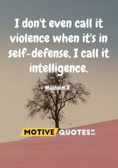 I don't even call it violence when it's in self-defense, I call it intelligence. on Inspirationde