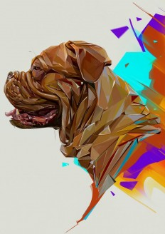 Year Of The Dog by Denis Gonchar on Inspirationde