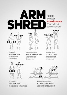 Arm Shred Workout on Inspirationde