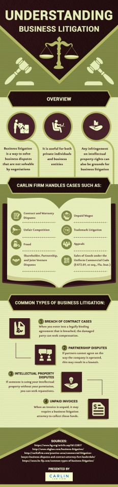 Infographic: Business Aspects That Come under the Purview of Business Litigation | Carlin Law Firm