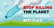 Plastic Water Bottle Pollution [Infographic]: Facts & Effects