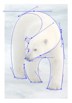 Polar Bear Logo by Gert van Duinen on Inspirationde