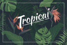 Tropical Set: Patterns & Elements on Inspirationde