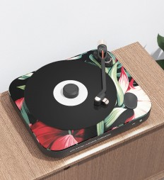 R P 0 1 Turntable on