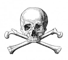 Skull and Crossbones – Old Book Illustrations