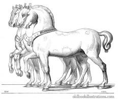 horses-san-marco.jpg (680×572)