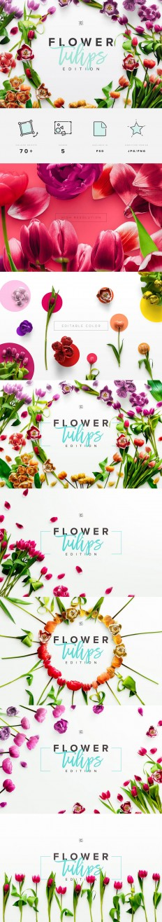 Flower Tulips Edition - Custom Scene on Inspirationde