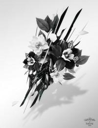 Justin M. Maller • Art Director & Illustrator • Online Portfolio