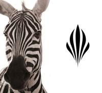 Zebra-inspired   Logo Design Love