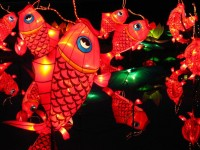 Koi Lanterns by ~Monochrone