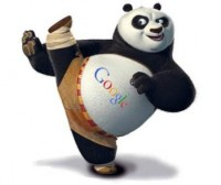 Google Panda WordPress Plugins and Tips to Recover from Panda Slap