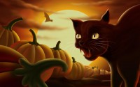 Google ?? http://www.win8tabletpcs.com/wp-content/Wallpapers/images/20111221/angry-cat-halloween-72001296.jpg ?????