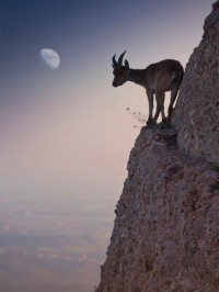 Outdoor Scenes - Week 2 Gallery - Traveler Photo Contest 2012 - National Geographic