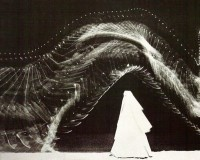 photographic bee: Etienne Jules Marey
