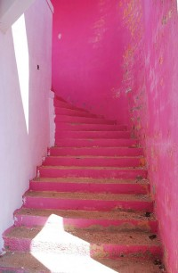 pink « plenty of colour