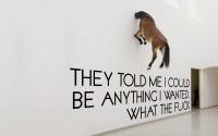 white text wall WTF funny typography horses - Wallpaper (#1940179) / Wallbase.cc