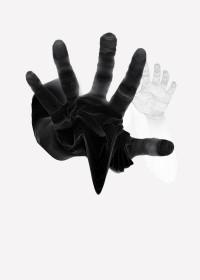 olga-feldman-linza-5.jpg 1,000×1,400 pixels
