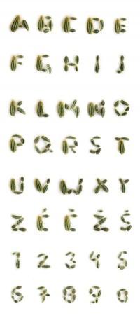 Typography hurts | iGNANT