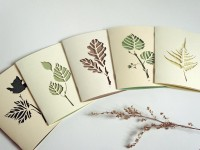 Botanical papercut greetings cards set of 5 by Papercutout