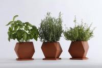 Herb | iGNANT