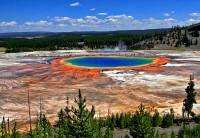 Amazing Colors - Craized.com