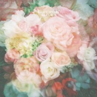 flower | 439 ??????????